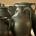ceramika_rekodzielo_ceramics_handicraft_900